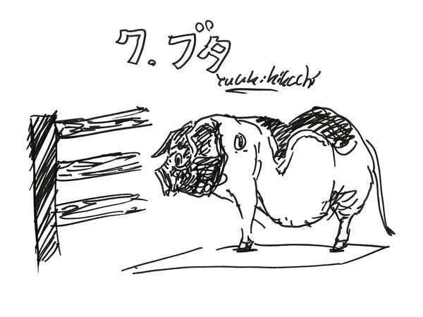 27_kikuchi