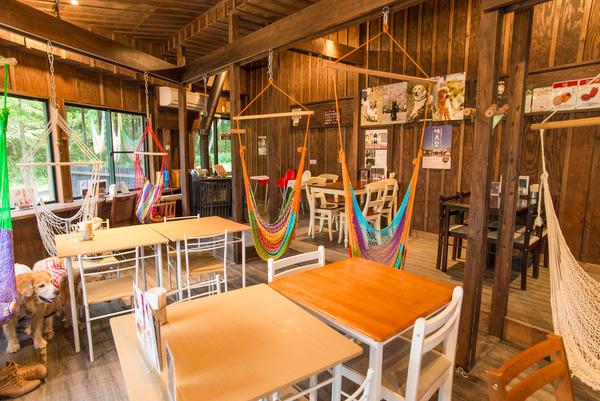 ・161002_hammock-cafe-17