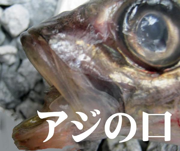 030-のコピー