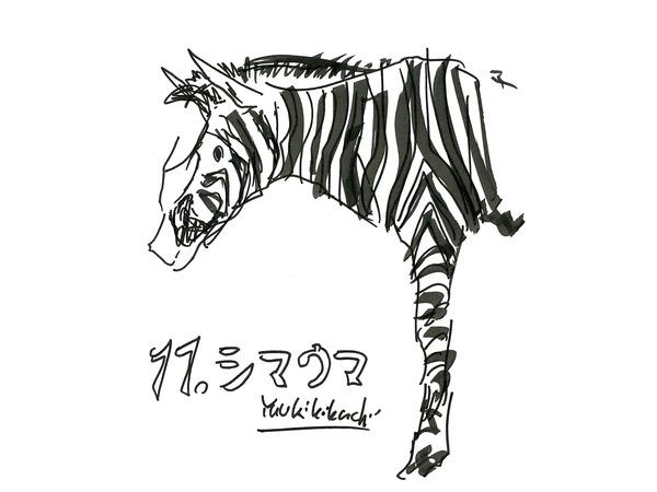 35_kikuchi