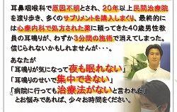 耳鳴り矢作01