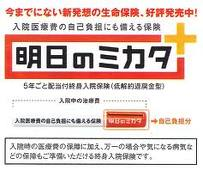 seimei_hoken_asuno_mikata