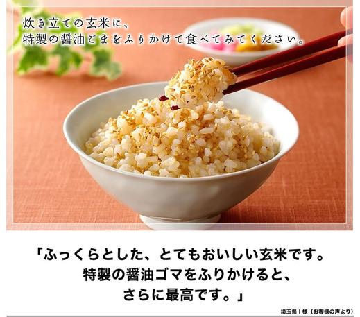 main_oishii_genmai