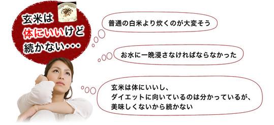 genmai_tuzukanai019