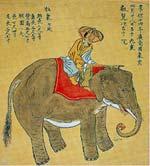 20110428_elephant01