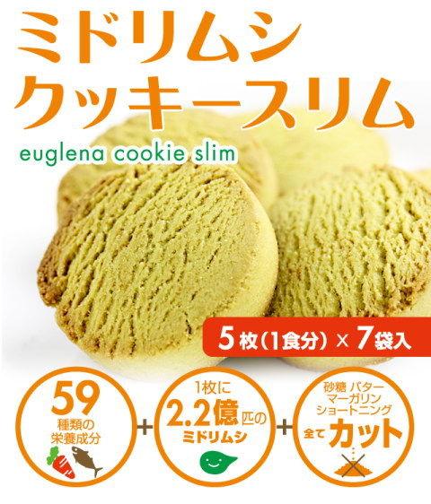 midorimushi_cake480_mk_01