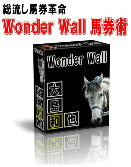 wonder-wall.jpg