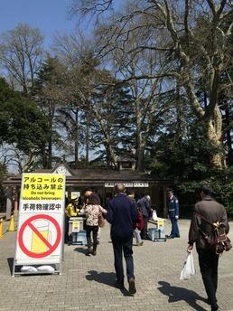 3月30日 新宿御苑?