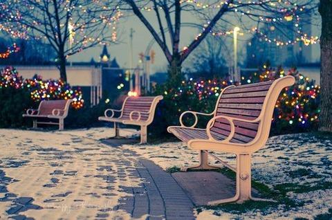 クリスマス 3つのベンチの公園 2015.12.15