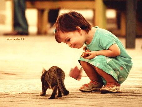 向こうに行く黒トラの猫に話しかける薄いグリーンの服を着た女の子