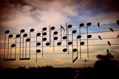 電線音符鳥