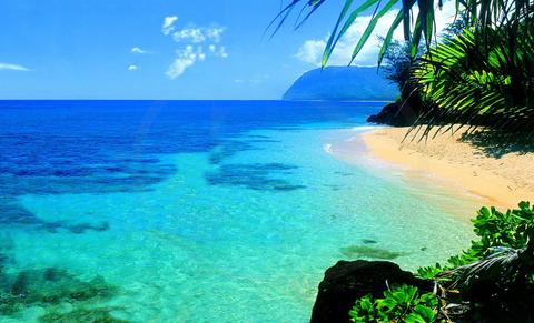 ハワイ美しいビーチ20150601