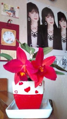 ミナキーの一日一生(笑)ブログ-20110608130137.jpg