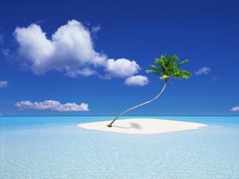 海の真ん中にヤシの木1本20140815