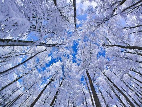 美しい冬景色33