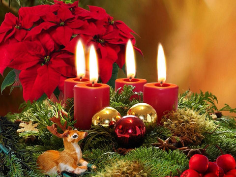 クリスマス ポインセチアと赤い蝋燭と鹿 2015.12.15