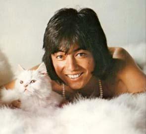 沢田研二 猫と