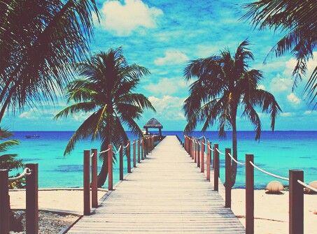 ヤシの木と桟橋と海
