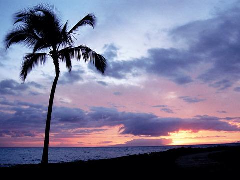 ハワイの黄昏20150601