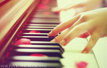 ピアノを弾いてる手と赤い花びら