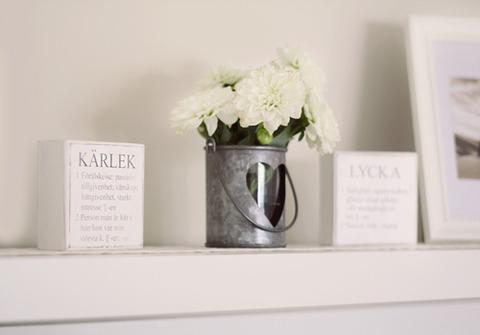 棚の上の白い花2013925