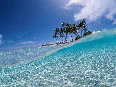 海・無効にヤシの島