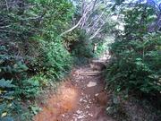 s-03 登山道