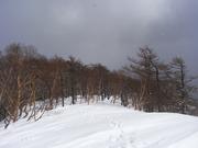 s-26 下山中稜線
