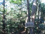 s-08 愛宕山