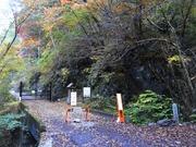 s-01 後山林道ゲート