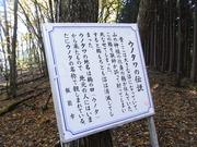 s-09 ウノタワ伝説