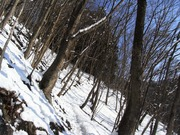 s-03 登山道下部