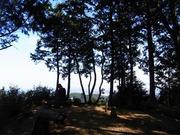 s-14 スカリ山山頂部