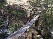 s-22 吊り橋