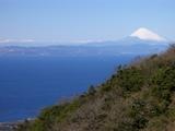 大島から富士山