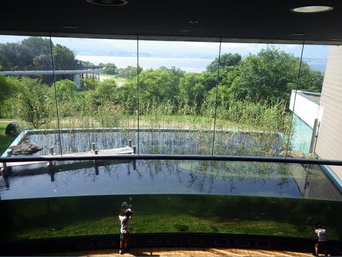 琵琶湖博物館c