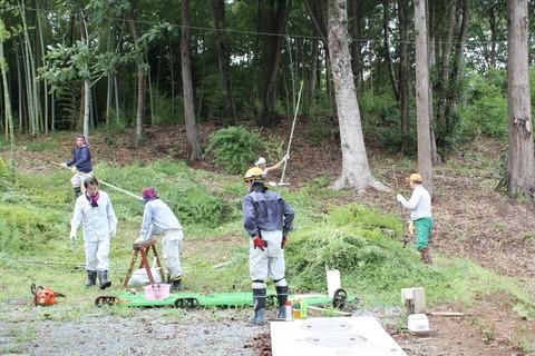 竹林伐採・野菜収穫体験です!