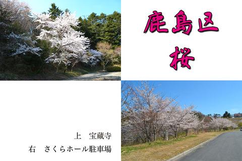 blog-kashima