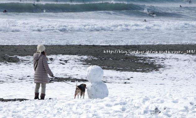 雪やこんこで、わんこは喜び〜♪