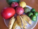 石・島のフルーツたち