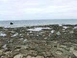 石・白保海岸