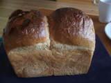 石・トミーのパン