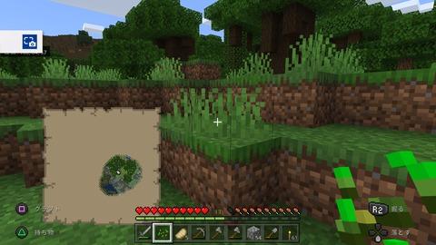 Minecraft_20201123181124