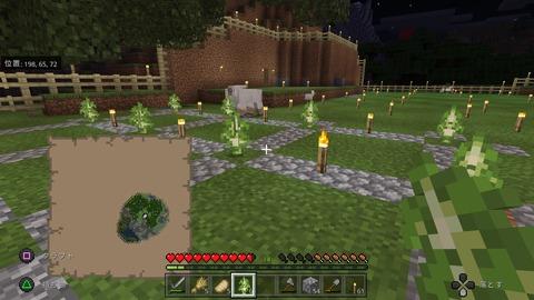 Minecraft_20201123182011
