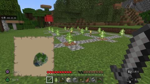 Minecraft_20201119100057