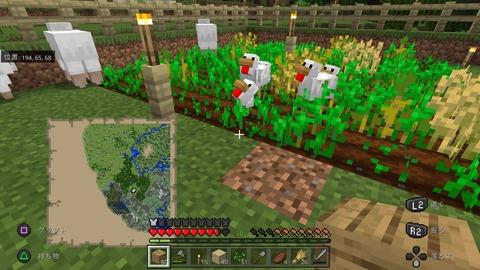 Minecraft_20201202131157