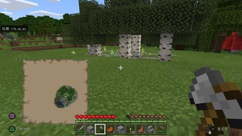Minecraft_20201119095839