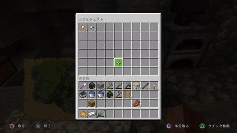 Minecraft_20210124210456