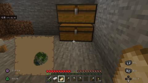 Minecraft_20201124201104