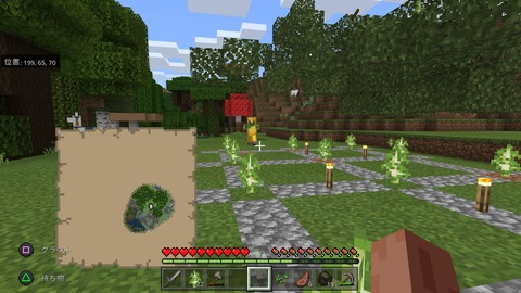 Minecraft_20201119093433